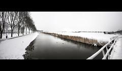 Panorama Brug Kwadijk (shoot it!) Tags: bridge winter panorama snow photoshop december sneeuw brug polder stich 2010 kwadijk december2010