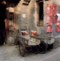 Six wheels in the alley ( ken ) Tags: china street 120 6x6 film alley kodak beijing    flexaret  meopta  ektacolorpro160
