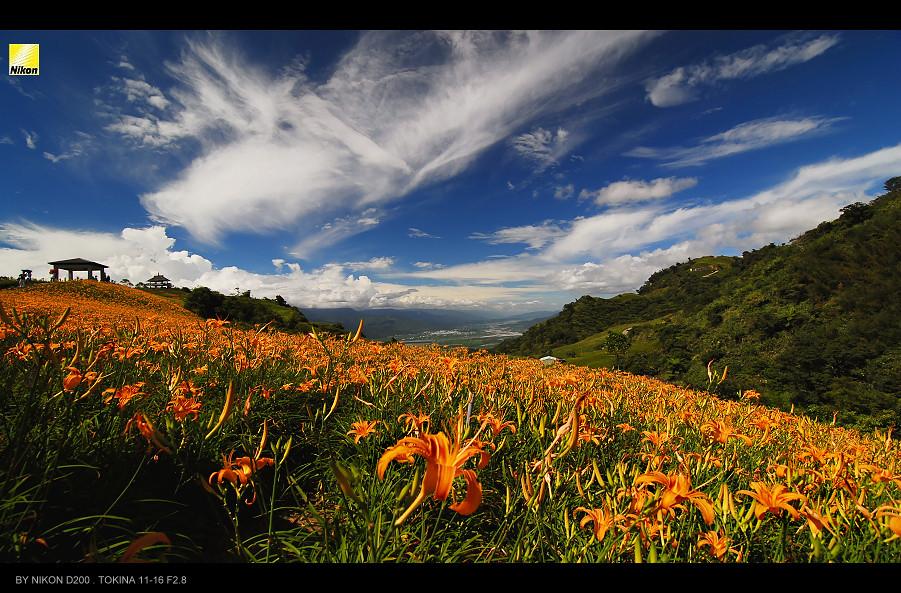 http://farm6.static.flickr.com/5166/5285699366_63c0ee89b3_b.jpg