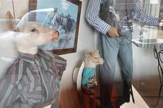 (Polish Sausage Queen) Tags: dog southdakota roadtrip taxidermy deer sd disturbing walldrug fuckedup fakeanimals crosscountryroadtrip acrossamerica walldrugstore northwesternunitedstates