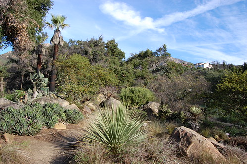 Santa Barbara Botanical Garden (overview)