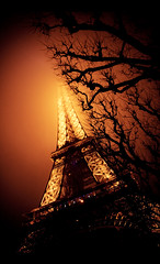 Happy New Year 2011 ! (Cyrielle Beaubois) Tags: trees light paris france tower canon eos shadows eiffeltower january first sigma arbres toureiffel lumires happynewyear ombres 2011 400d sigma1770mmf2845dcmacro cyriellebeaubois