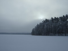 Frozen lake (fsteffenhagen) Tags: trees winter lake snow ice forest landscape frozen uckermark 2010 templin lbbesee