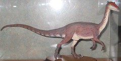 (Not So) Old Paleoart at MOS - Ceolophysis