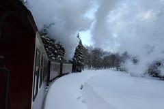 Harz (ignazw) Tags: snow ice train sneeuw zug steam harz trein ijs hsb harzerschmalspuhrbahnen