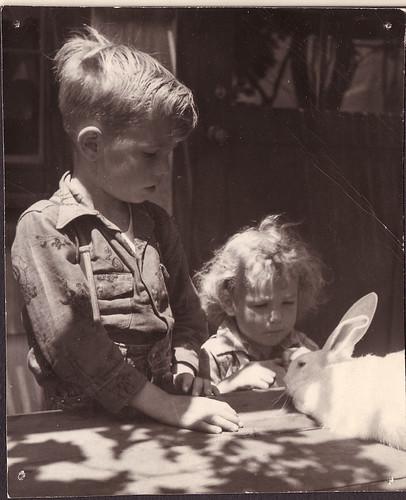 Don Darlene w rabbit