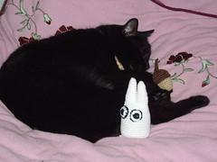 My Amigurumi Totoro (kuzco_cat) Tags: sleeping white cute cat self klein crochet made acorn totoro amigurumi kuzco tomcat eichel weis hkeln handarbeit ss