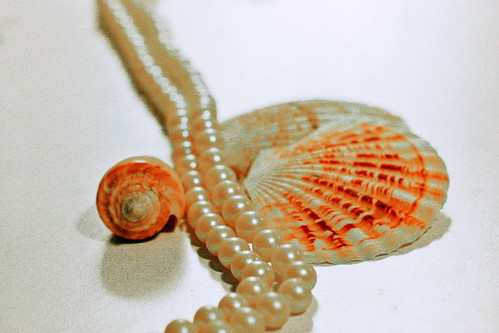 15/365.2011 {Pearls & Shells}