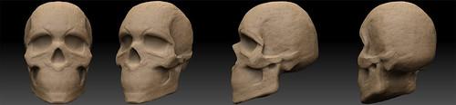 SkullShape