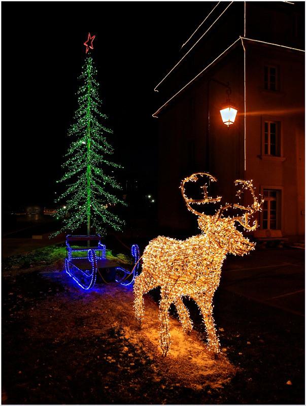 Vos plus belles photos du mois de décembre 2010 5366832902_34266462ec_b