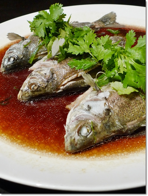 Steamed Live Fresh Cod with Soy Sauce
