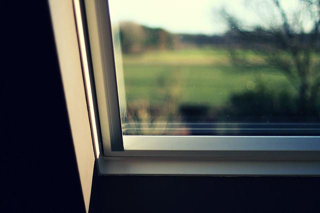 View / No View