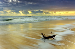 Rendition of a Golden Seascape (MADdOG PHOTOGRAPHY) Tags: sunset sea seascape elephant composition sunrise canon early sand exposure afternoon extreme scenic sunsets australia east explore sunrises scape darrell sundays eastcoast density seaway currumbin canvass simplepleasures explored 1020mmsigma canon40d absolutelystunningscapes australiathunderstorms seascapelongexposure cloudsstormssunsetssunrises