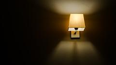 DSC09921 (srdnc) Tags: sigma50mmf28macro sigma macro 50mm lamba lamp melankolik sony nex nex6 sonynex6