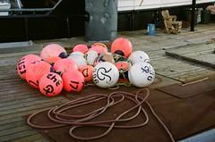 Rainier (eva hansen) Tags: 35mm film analog ballard fishermansterminal seattle commercialfishing fishing buoys buoyant
