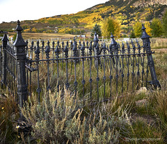 Crested Butte Cemetery (uptownguydenver) Tags: autumn captureone coloradoaspentreesatcrestedbutte crestedbutte iq350 phaseonexf cemetery deciduoustree evening fall fallfoliage landscapephotography ruralphotography yellowleaves ~attribute ~photography ~season ~timeofday ~typeofphotography co usa crestedbuttecemetery