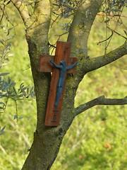 Jesus 1 (Immanuel COR NOU) Tags: jesus cristo christus crist cruz creu croix jhs jesu cornou immanuel jesucristo pasin viacrucis vialucis salvador rey knig savior lord