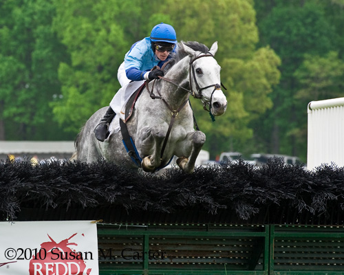 Ptarmigan, Jeff Murphy, steeplechase horse racing