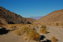 DeathValley_CtoM_022 Photo