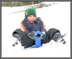 Snow Nov 10 041 (way19) Tags: white snow cold adam hat bike garden children bush berry gate play slide isleofwight glove snowball sledge