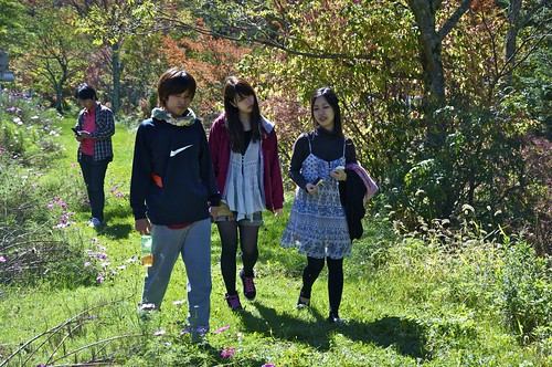 Tateshina countryside