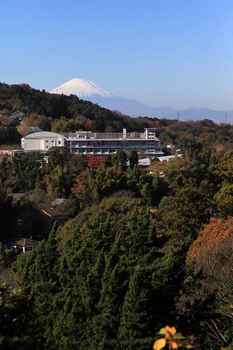 円覚寺弁天堂 2010年12月4日