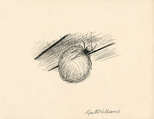 ink sketch of spider with ball of thread