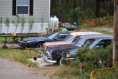 Front Yard Lineup (Guessed) (Rob_sg) Tags: black cars car bronze yard guess vehicles guessed packard hondapassport pontiacfirebird 1953chevrolet