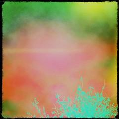 Is this how an artist sees a tree and a sky? (DeeAshley) Tags: cameraphone life california ca usa art digital square photography weird photo blog interesting flickr pretty texas foto arte random edited tx bonito vivid blogs special vida squareformat bonita mobilephone variety popular mylife app interesante iphone eeuu variedad editado brilla iphone4 fotografia iphoneography iphonographie gogoloopie instagram instagramapp uploaded:by=instagram deeashley dionneashley extrano mylovelymuse iphoneografia mivida