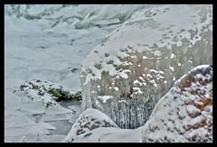 On the rocks (evoergo) Tags: ice flevoland almere ijs markermeer oostvaardersdijk