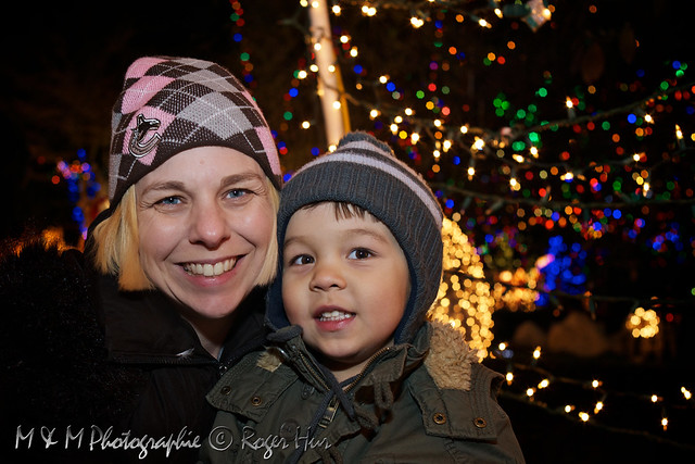 Stanley Park Christmas Train 2010