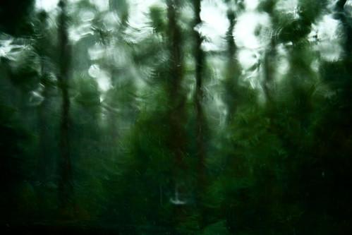 Impressions of Rain