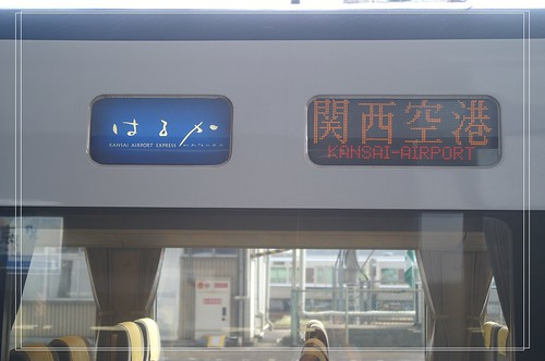 PICT7441