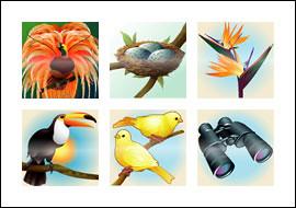 free Birds of Paradise slot game symbols
