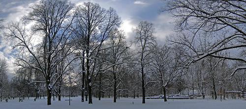 Luitpoldpark_23