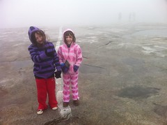 Top of Stone Mountain in the Fog
