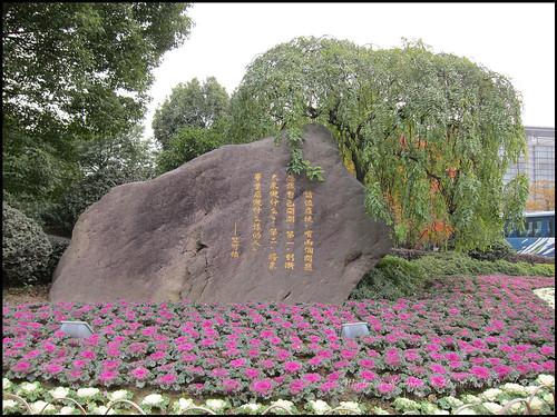 2010-12-08 Shanghai 055P14