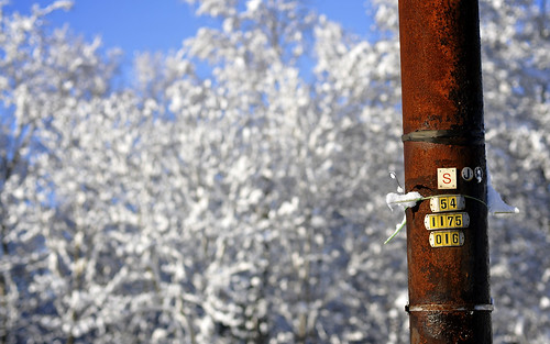 Rusting Pole In The Snow