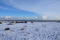 Is That The Beach? (EJ Images) Tags: uk winter sea england snow slr ice beach suffolk nikon frost dslr eastanglia 2010 lowestoft nikonslr d90 nikond90 lowestoftbeach pakefieldbeach 18105mmlens ejimages