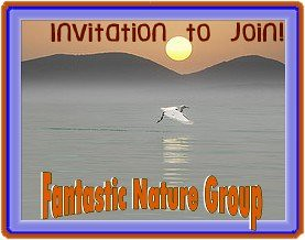 Fantastic Nature invite