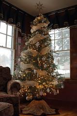 Christmas tree (Vogue 7815 tree skirt pattern, Simplicity 5145 valance pattern) (kizilod2) Tags: christmas white tree gold pattern sewing ornaments decorating treeskirt vogue7815 simplicity5154