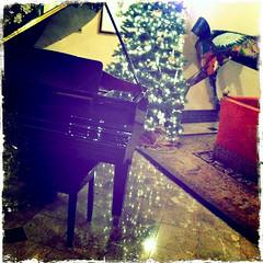 san francisco december 2010 (beryl) Tags: sanfrancisco square piano lobby sofa xmaslights unionsquare squarecrop xmastree iphone orientalrug kensingtonparkhotel hipstamatic