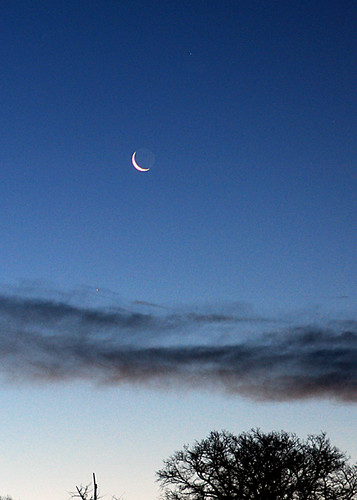 goodnight moon, I want the sun . . .