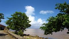Seawall Scenery (NigelDurrant) Tags: ocean sea atlantic atlanticocean cloudsskybluewallviewvistaseawallseawallkingstongeorgetown guyanasouthamericaroundhousetreesseasidegrapecoccolobauvifera