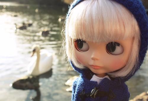 Dottie admiring a swan / ADAD 003