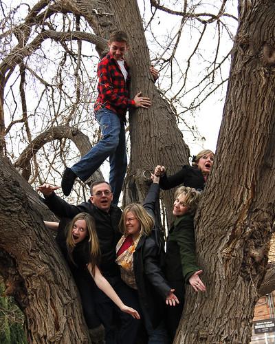 Tree silly 8x10