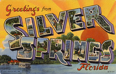Greetings from Silver Springs, Florida - Large Letter Postcard (Shook Photos) Tags: silversprings florida linen postcard houseboat postcards greetings linenpostcard bigletter largeletter silverspringsflorida largeletterpostcard linenpostcards largeletterpostcards bigletterpostcard bigletterpostcards