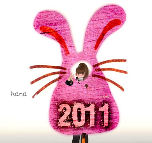 DDD_Rabbit board 2011