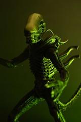 Alien 2 (Kwehttamm) Tags: alien predator predator1 classicpredator alienvspredatorneca
