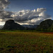 Vinales valley walk